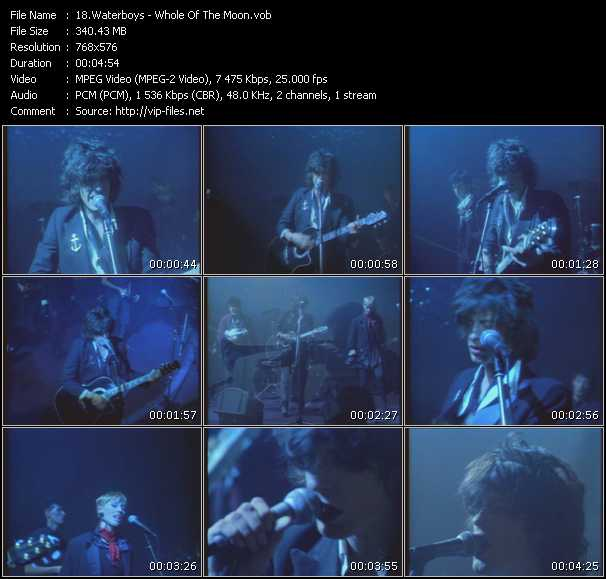 Waterboys - The Whole Of The Moon