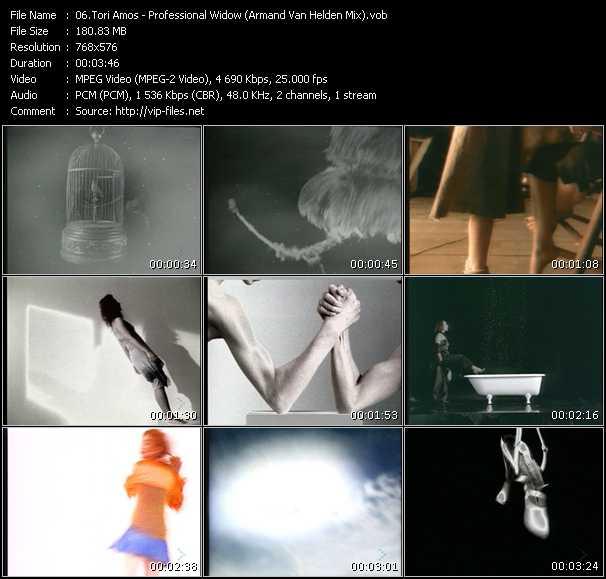 Tori Amos - Professional Widow (Armand Van Helden Mix)