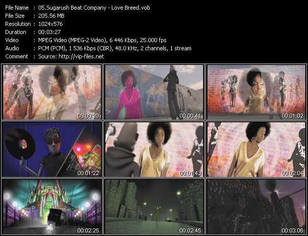 SugaRush Beat Company - Love Breed