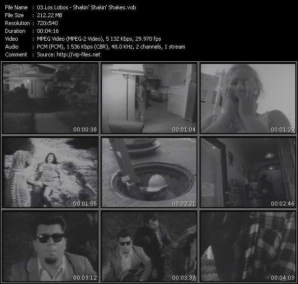 Los Lobos - Shakin' Shakin' Shakes