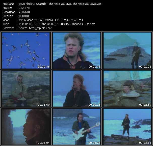 A Flock Of Seagulls - The More You Live, The More You Love