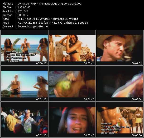 Passion Fruit - The Rigga Digga Ding Dong Song