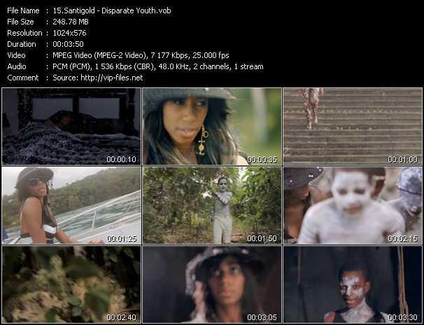 Santigold (Santogold) - Disparate Youth