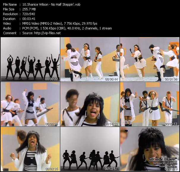Shanice (Shanice Wilson) - No Half Steppin'