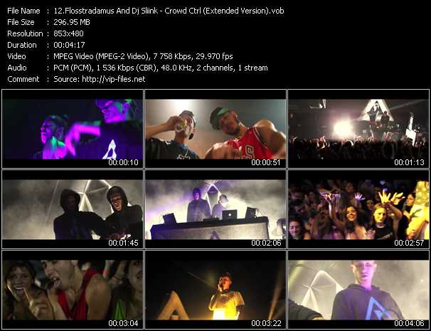 Flosstradamus And Dj Sliink - Crowd Ctrl (Extended Version)