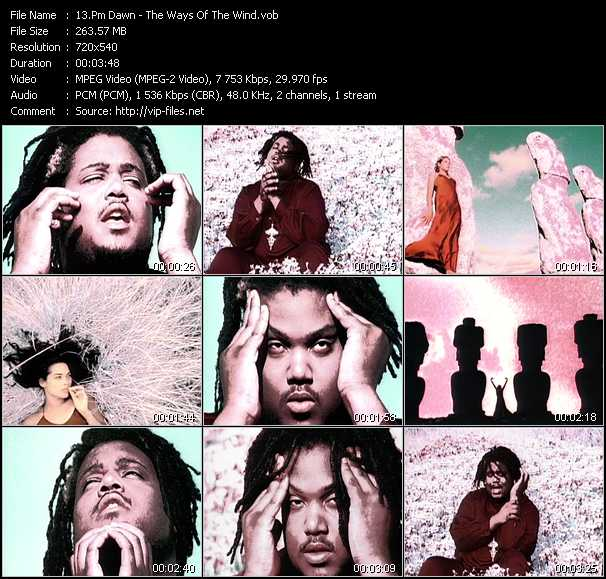 Pm Dawn - The Ways Of The Wind