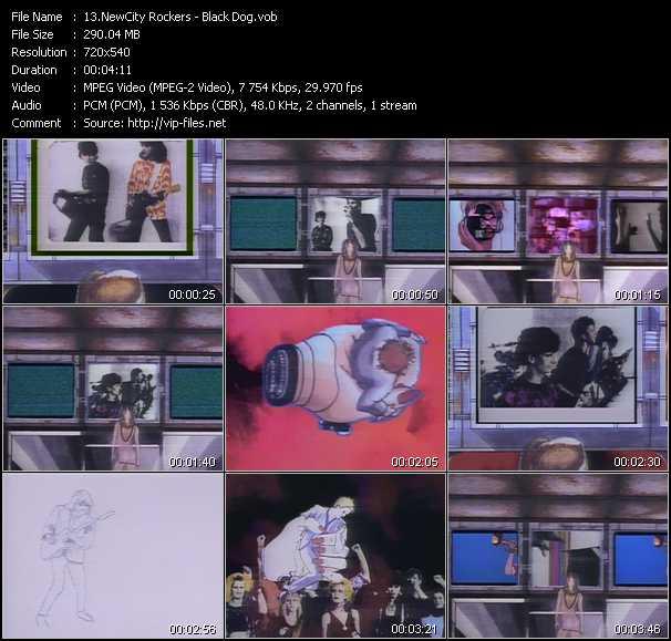 NewCity Rockers - Black Dog