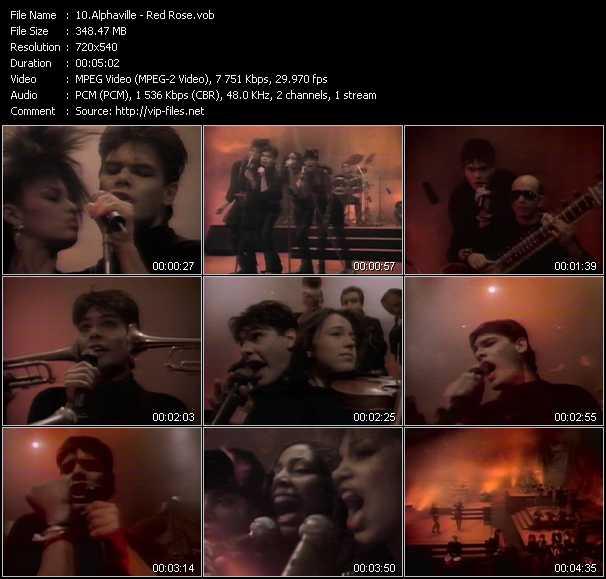 Alphaville - Red Rose