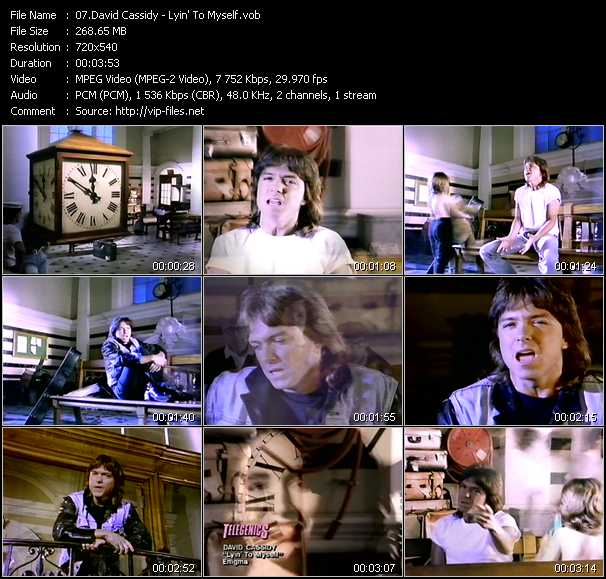 David Cassidy - Lyin' To Myself