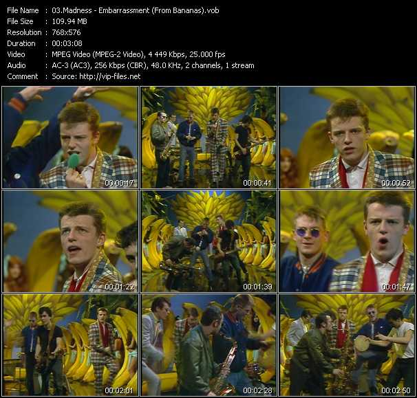 Madness - Embarrassment (From Bananas)