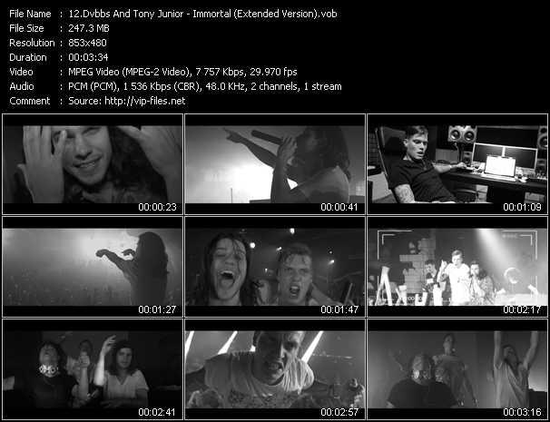 Dvbbs And Tony Junior - Immortal (Extended Version)