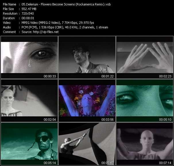 Delerium - Flowers Become Screens (Rockamerica Remix)