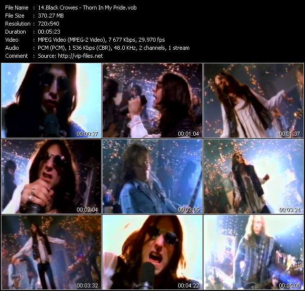 Black Crowes - Thorn In My Pride