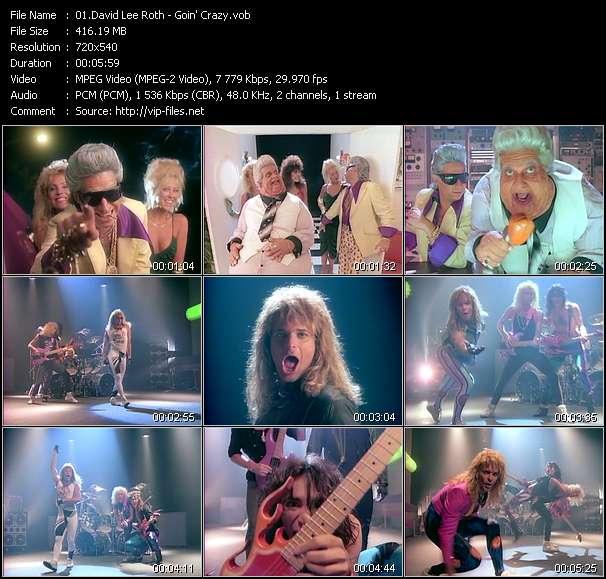 David Lee Roth - Goin' Crazy