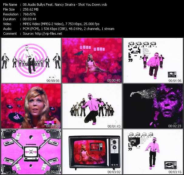 Audio Bullys Feat. Nancy Sinatra - Shot You Down