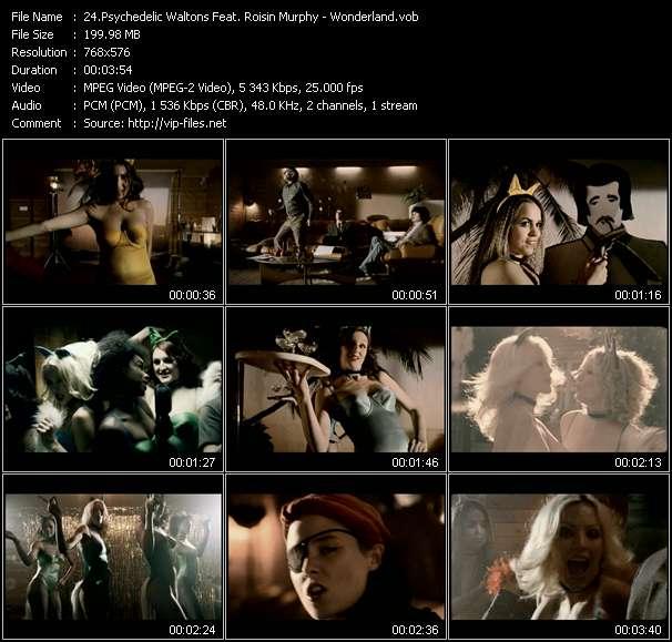 Psychedelic Waltons Feat. Roisin Murphy - Wonderland