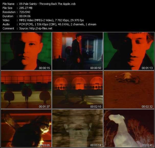 Pale Saints - Throwing Back The Apple