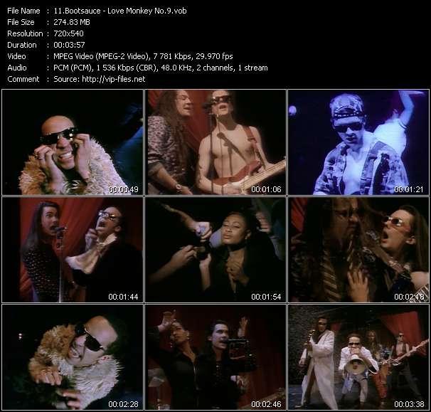 Bootsauce - Love Monkey No.9