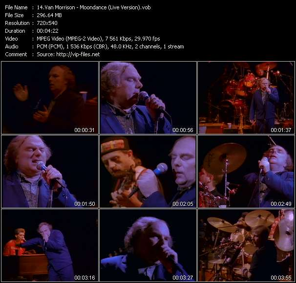 Van Morrison - Moondance (Live Version)