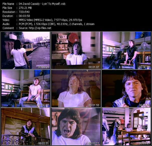 David Cassidy - Lyin' To Myself