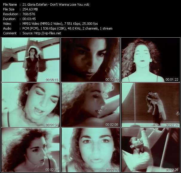 Gloria Estefan - Don't Wanna Lose You