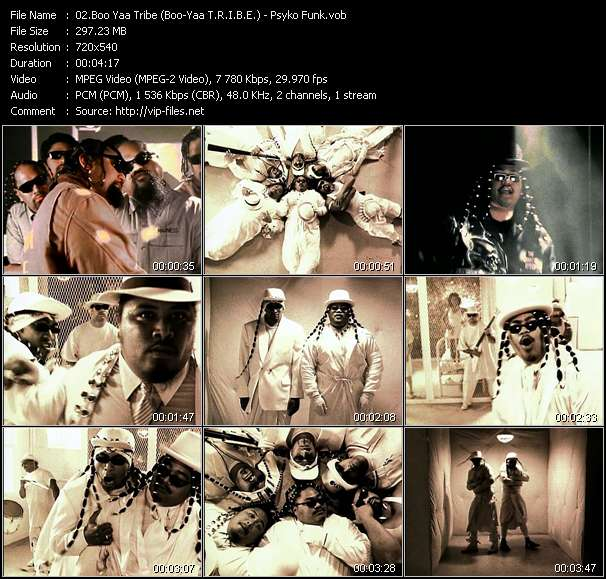 Boo Yaa Tribe (Boo-Yaa T.R.I.B.E.) - Psyko Funk