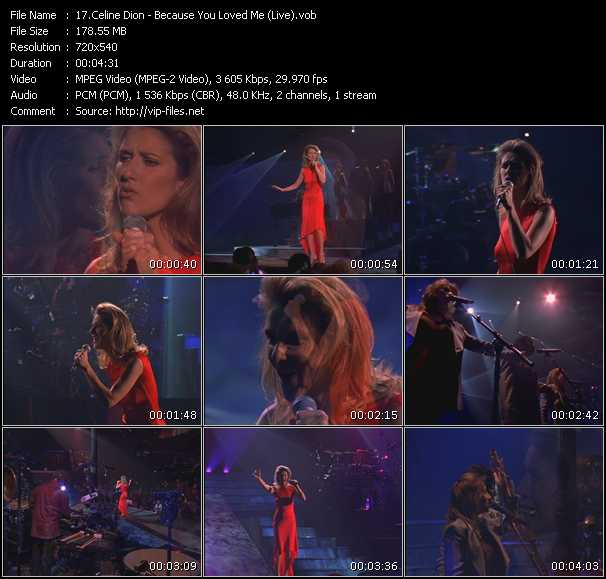 Celine Dion - Because You Loved Me (Live)