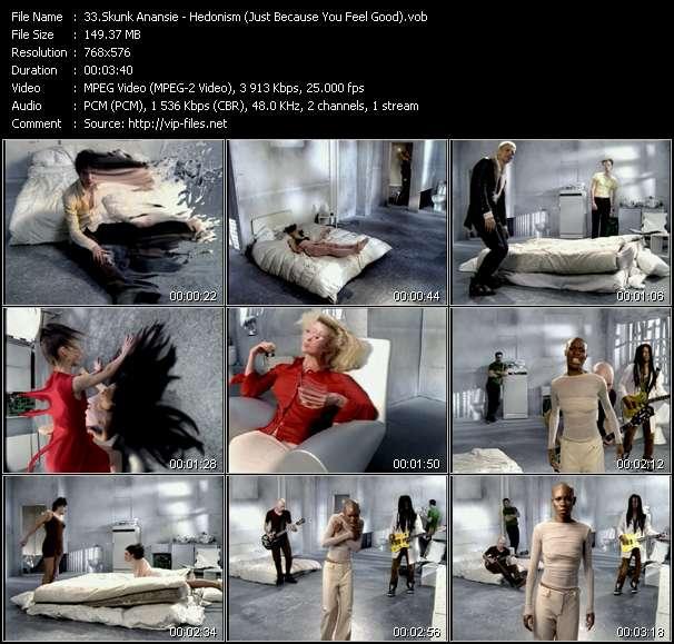 Skunk Anansie - Hedonism (Just Because You Feel Good)