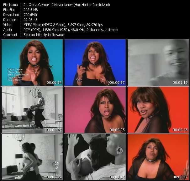 Gloria Gaynor - I Never Knew (Hex Hector Remix)