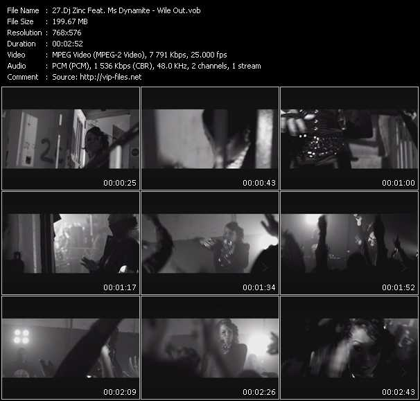 Dj Zinc Feat. Ms. Dynamite - Wile Out