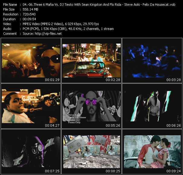 Three 6 Mafia Vs. Tiesto With Sean Kingston And Flo Rida - Steve Aoki - Felix Da Housecat - Feel It - I'm In The House - Radio (Infadels Remix)