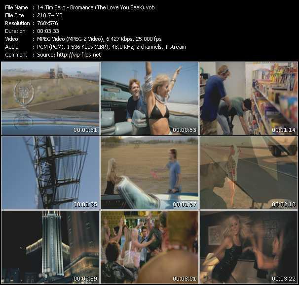 Tim Berg - Bromance (The Love You Seek)