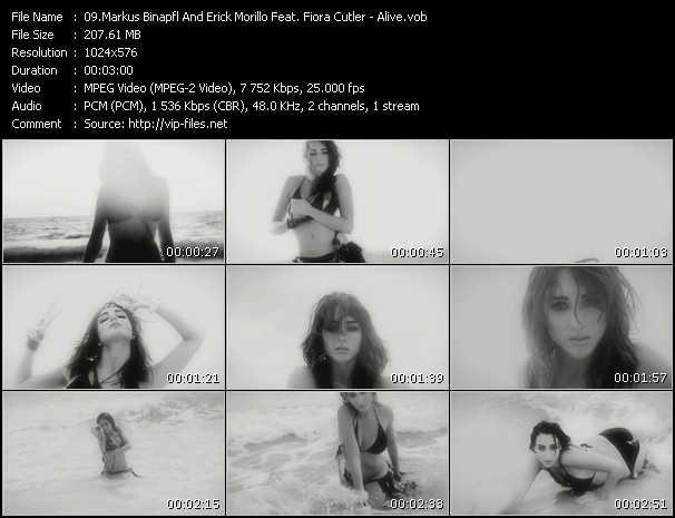 Markus Binapfl And Erick Morillo Feat. Fiora Cutler - Alive