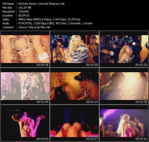 Erika Jayne - One Hot Pleasure