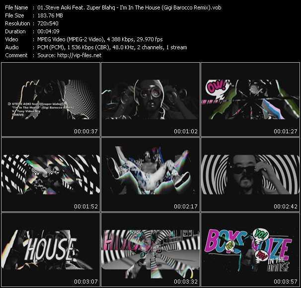 Steve Aoki Feat. Zuper Blahq - I'm In The House (Gigi Barocco Remix) (Vj Tony Video Mix)