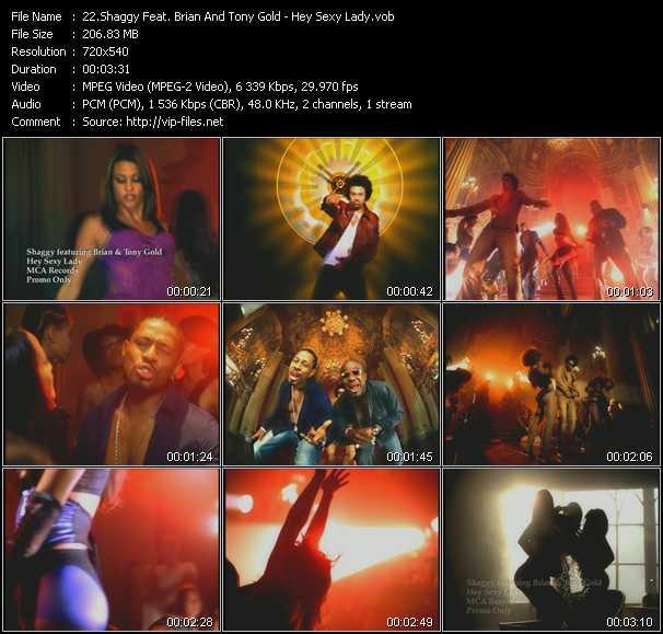 Shaggy Feat. Brian And Tony Gold - Hey Sexy Lady