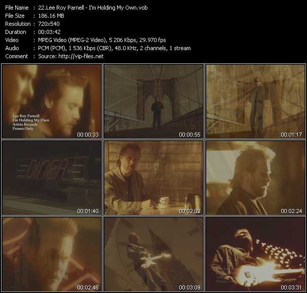 Lee Roy Parnell - I'm Holding My Own