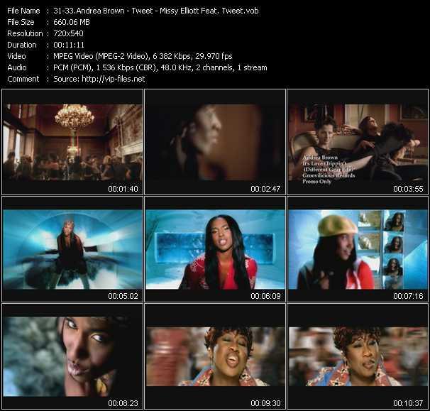 Andrea Brown - Tweet - Missy Elliott Feat. Tweet - It's Love (Trippin') (Different Gear Edit) - Oops (Oh My) (Dance Remix) - 4 My People (Basement Jaxx Vocal Mix)