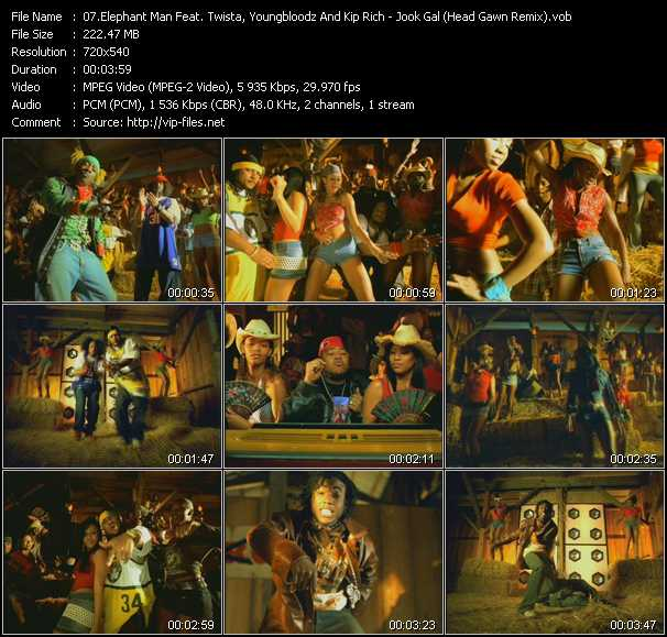 Elephant Man Feat. Twista, YoungBloodz And Kip Rich - Jook Gal (Head Gawn Remix)