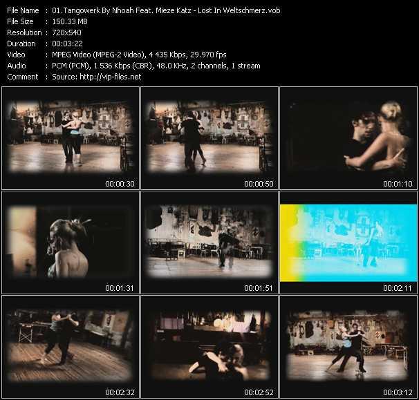 Tangowerk By Nhoah Feat. Mieze Katz - Lost In Weltschmerz