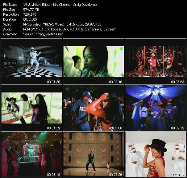 Missy Elliott - Mr. Cheeks - Craig David - Work It - Lights, Camera, Action - What's Your Flava?