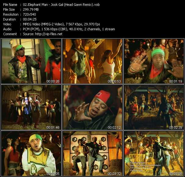 Elephant Man - Jook Gal (Head Gawn Remix)